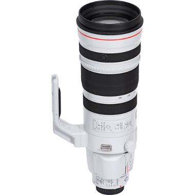 Canon EF 200-400mm f/4L IS with 1.4x Extender